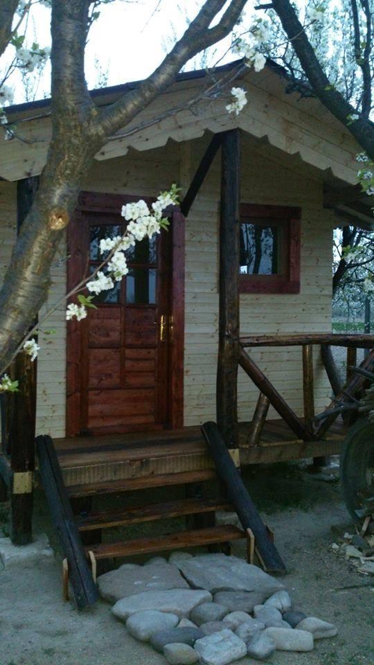 Cabana de lemn